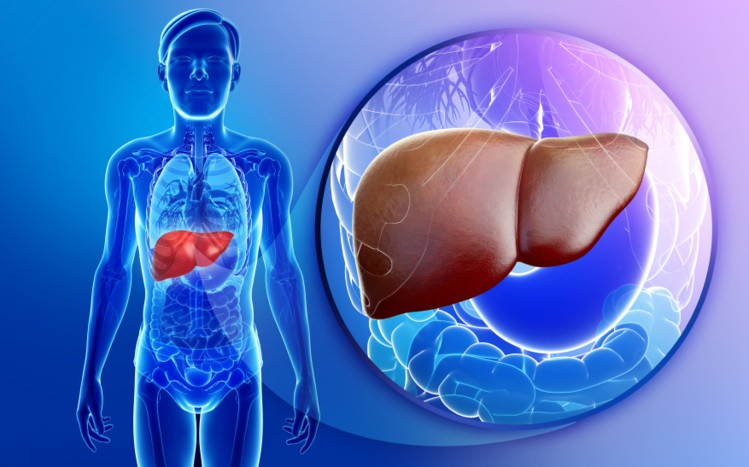 Fatty Liver Miracle Guide - Is It Effective?