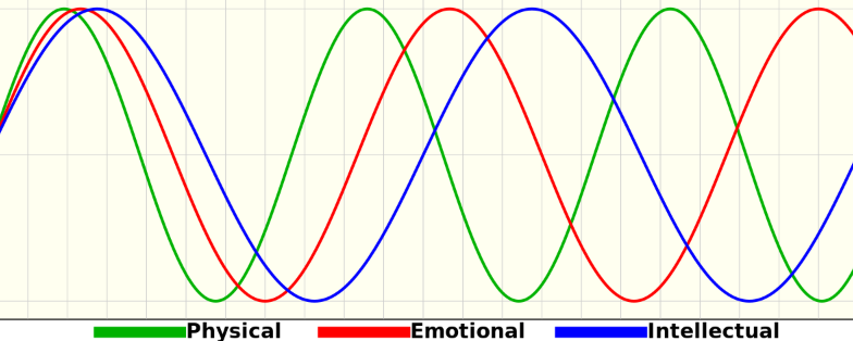 The Biorhythm Review - Is it For You? Download