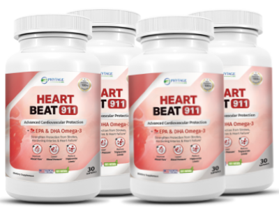 Heart Beat 911 Review