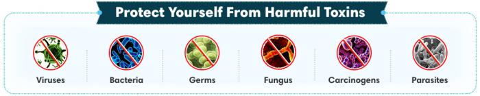 Q-ION Immune Defense Ingredients