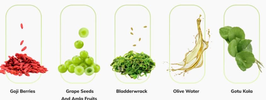 Met_Slim_Pro_Ingredients
