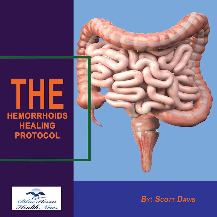 The Hemorrhoids Healing Protocol PDF Download